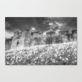 York City Walls Canvas Print