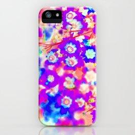 Peach Sherbet iPhone Case