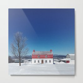 Tiny Red House Metal Print