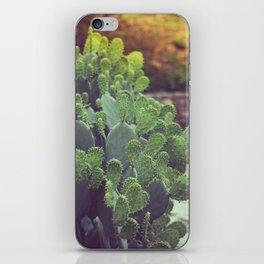 Southwest Sunset iPhone Skin