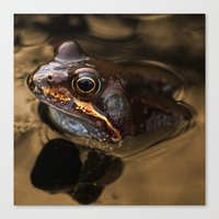 kermit Canvas Prints featuring Bronze Kermit by Rob Hawkins Photography
