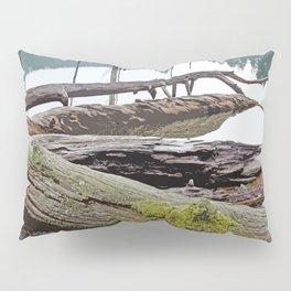 FALLEN TREES ALONG MOUNTAIN LAKE TRAIL Pillow Sham