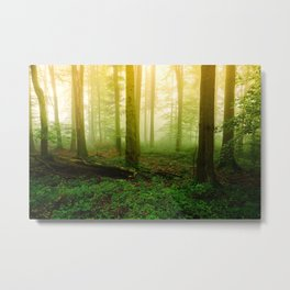Misty Green Forest Photography Metal Print