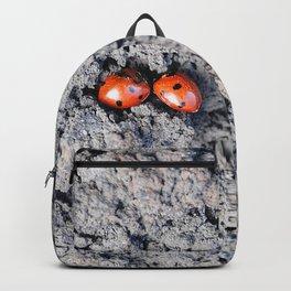 Lady and Gentleman Bug Backpack