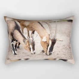 domesticated goats eating from sand Rectangular Pillow