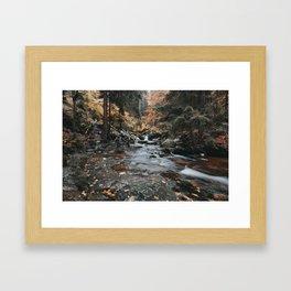 Autumn Creek - Landscape and Nature Photography Framed Art Print