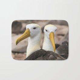Waved Albatross birds in the Galapagos Bath Mat