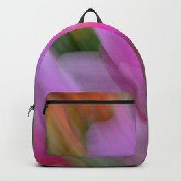 Wings 2 Backpack