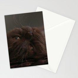 Lazy Daantje Stationery Cards