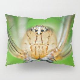 Oxyopes M Pillow Sham