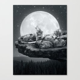 Echoes of a Lullaby Canvas Print