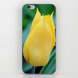 Unbridled Joy iPhone Skin