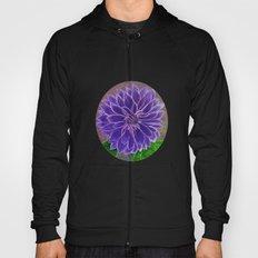 Purple Dahlia  Hoody