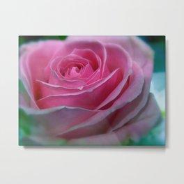 JANUARY ROSE (SOFT PINK GREEN ROSE) Metal Print