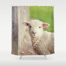 Little Lamb I Shower Curtain