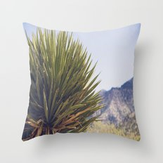 Scenes from the West Throw Pillow