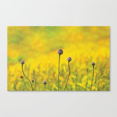 Summer ~ yellow Canvas Print