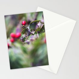 Longwood Gardens Autumn Series 166 Stationery Cards