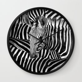 Modern Black And White Zebra Art Wall Clock