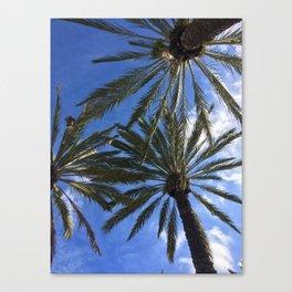 Palos Verdes Canvas Print