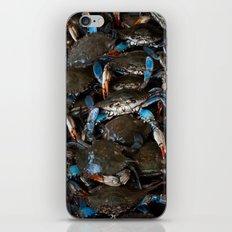 CRABS ON CRABS iPhone & iPod Skin