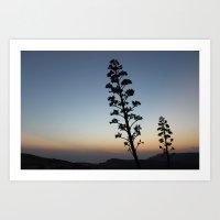Wild sunset Art Print