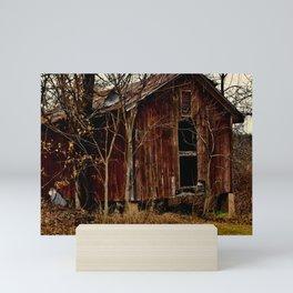 Farm Shed Mini Art Print