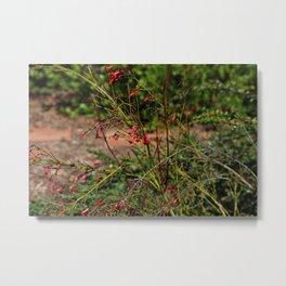 Spring garden red little flowers Metal Print