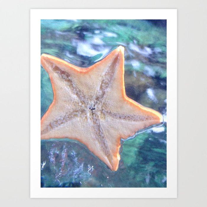 Wish Upon a Starfish Art Print