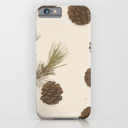 Merry Christmas My Dear iPhone Case