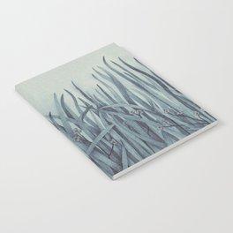 Green-Blue Grass Notebook
