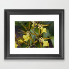 Sunny Orchid Framed Art Print