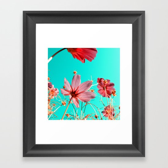 cosmos flowers abstract I Framed Art Print