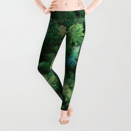 Arial Arboreal Leggings