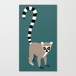 Ring-tailed lemur Canvas Print