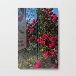 Blocked Beauty Metal Print