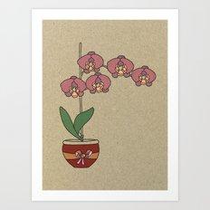 orchid nr2 Art Print