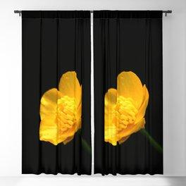Buttercup Flower Blackout Curtain