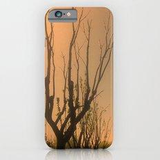 Spiritual trees iPhone 6s Slim Case