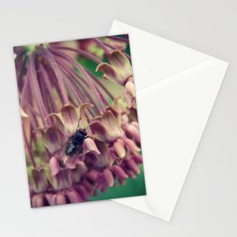 The Fly and Milkweed Stationery Cards