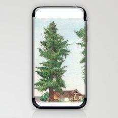 Neighbor's Tree iPhone & iPod Skin
