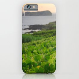 Grapevines and islet iPhone Case
