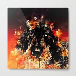 wire haired dachshund dog ws Metal Print