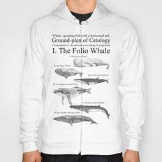 I. The Folio Whale Hoody