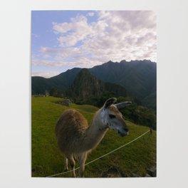 Machu Picchu 001 Poster