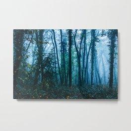 Sacred Woods Metal Print