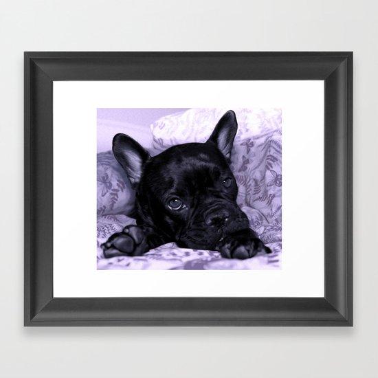 Purple Frenchie Framed Art Print