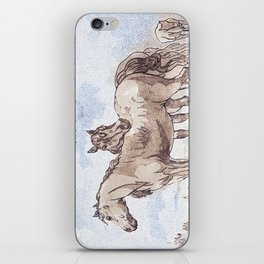 Companions - horse love iPhone Skin