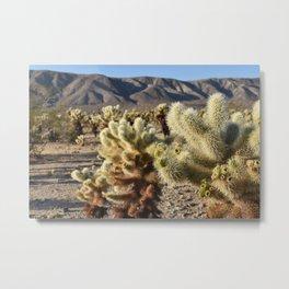 Cactus for Miles Metal Print