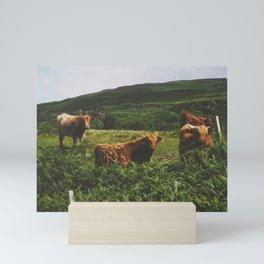 A Field Of Highland Cows Mini Art Print